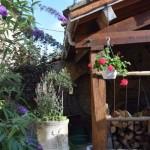 mur de végétation et fleurs